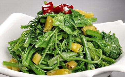 龙须菜的营养