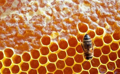 晚上吃蜂蜜有助于睡眠