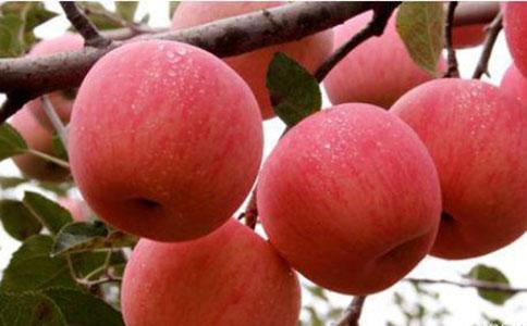 夏天吃苹果好